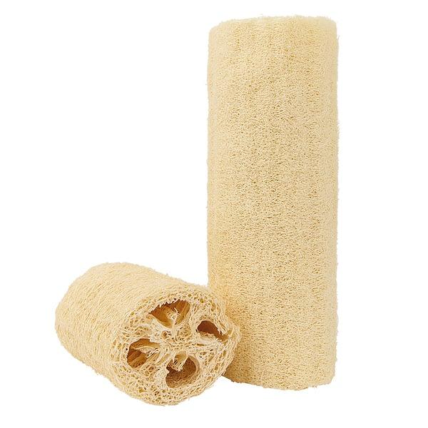 Croll & Denecke luffa sponge
